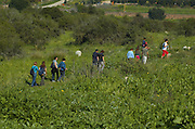 A group hiking through the fieldson the Judea hills, Israel