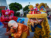 "03 NOVEMBER 2017 - BANGKOK, THAILAND:  Chinese style lion dancers perform during Loi Krathong at Wat Prayurawongsawat on the Thonburi side of the Chao Phraya River. Loi Krathong is translated as ""to float (Loi) a basket (Krathong)"", and comes from the tradition of making krathong or buoyant, decorated baskets, which are then floated on a river to make merit. On the night of the full moon of the 12th lunar month (usually November), Thais launch their krathong on a river, canal or a pond, making a wish as they do so. Loi Krathong is also celebrated in other Theravada Buddhist countries like Myanmar, where it is called the Tazaungdaing Festival, and Cambodia, where it is called Bon Om Tuk.    PHOTO BY JACK KURTZ"
