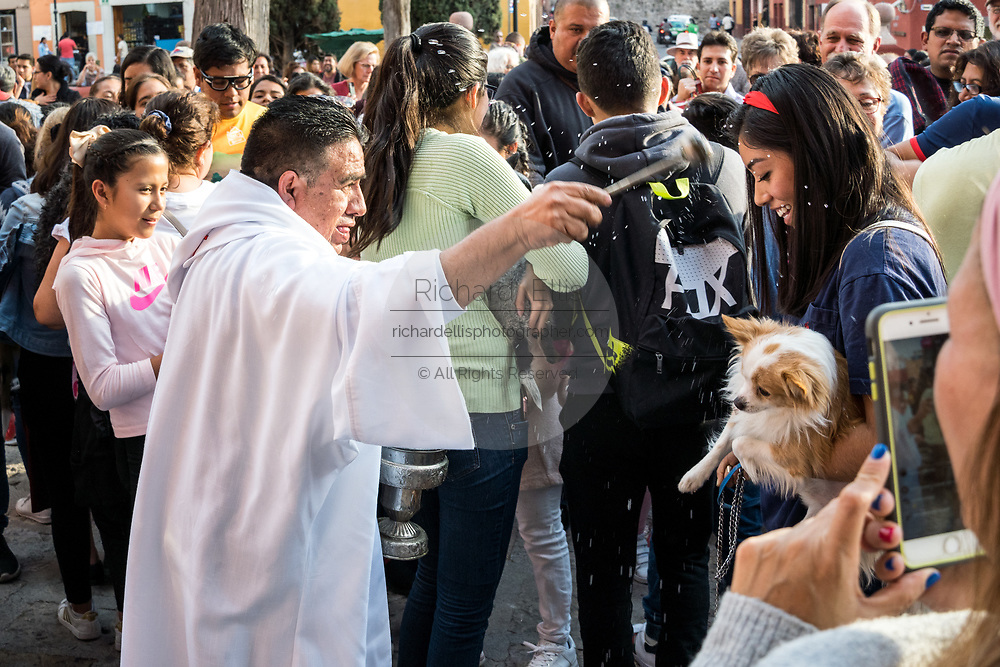 A Roman Catholic priest blesses gathered pets and pet owners during the annual blessing of the animals on the feast day of San Antonio Abad at Oratorio de San Felipe Neri church January 17, 2020 in the historic center of San Miguel de Allende, Guanajuato, Mexico.