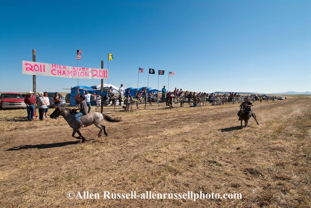 Fort Belknap Indian Reservation, Montana, Milk River Memorial Horse Races, Shetland Pony Race.