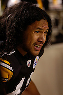Troy Polamalu of the Pittsburgh Steelers during a loss to Indianapolis 24-20 on Sunday, Nov. 9, 2008 in Pittsburgh.
