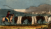 A train of pack horses carrying bolts (lengths) of woollen cloth for sale in the Cloth Hall, Leeds. At this date many of the pieces would have been produced by weavers working on hand looms in their cottagers. From 'Scenes in England' by the Rev. Isaac Taylor, London, 1822. Hand-coloured engraving.