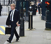 © Licensed to London News Pictures. 21/05/2013. Westminster, UK . Jo Johnson, MP for Orpington and adviser to David Cameron. Ministers arrive for a Cabinet meeting at Downing Street today 21 May 2013. Photo credit : Stephen Simpson/LNP
