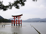 Japan, Miyajima, Itsukushima Temple The floating Gate