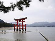 Japan, Miyajima, Itsukushima Temple The floating Gate