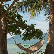 Tropical Beach Hammock slung between two palm trees, Palawan, Philippines