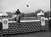 Shell Sponsored Events At The Dublin Horse Show.(R39).1986..07.08.1986..08.07.1986..7th August 1986..At the Horse Show Shell sponsored both the Speed and Power competition and The Puissance..The Speed and Power event was won by Hap Hanson riding 'Gambrinus'. The Puissance was shared by Capt John Ledingham (Irl) on 'Kilcoltrim' and Nick Skelton (GB) on 'Raffles Apollo' who both cleared the high wall at 7feet...Image shows Gillian Greenwood (GB) on 'Cheerio' taking part in the Shell Puissance Event.