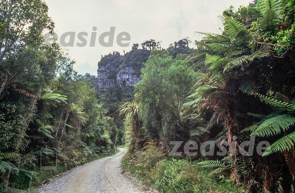 Bullock Creek Rd is a gravel road, leading along the Pororari River. It is easy access to the Inland Pack Track, leading through lush and dense coastal rainforrest.