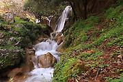 Israel, Galilee, Farod Falls in the Tzalmon Stream