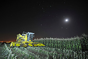 A night shot of a John Deere Corn picker in a corn field ready for harvesting. Photographed in Israel, Golan Heights