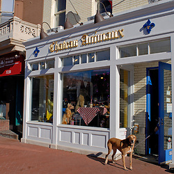 WASHINGTON, DC - A client pauses outside after a bath inside Chateaux Aminaux, a pet boutique on 8th Street in the Capitol Hill neighborhood of Washington, DC...Photo by Susana Raab