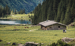 THEMENBILD - eine Almhütte mit anliegendem Stall für die Almtiere in der Nähe des Hintersee. Der Hintersee ist ein kleiner Gebirgssee in 1313 m Höhe im Talschluss des Felbertals in Mittersill. Der Bergsee ist ein Naturdenkmal und wurde unter Schutz gestellt. Der Hintersee gilt als Geheimtipp, Erholungsgebiet und ein Platz, den man gesehen haben muss, aufgenommen am 23. Juni 2019, am Hintersee in Mittersill, Österreich // an alpine hut with adjoining stable for the alpine animals near Hintersee. Hintersee is a small mountain lake 1313 m above sea level at the end of the Felbertal valley in Mittersill. The mountain lake is a natural monument and was placed under protection. The Hintersee is an insider tip, a place you must have seen and a recreation area on 2019/06/23, Hintersee in Mittersill, Austria. EXPA Pictures © 2019, PhotoCredit: EXPA/ Stefanie Oberhauser