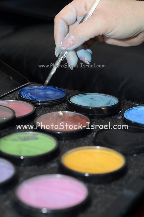 Makeup artist hand and colour kit