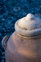 Terracotta rhubarb forcer covered with hoar frost in winter. Made by Mike Crosby-Jones at Gopsall Pottery