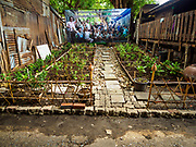 11 MAY 2017 - BANGKOK, THAILAND: A community garden on the site of an old home in Pom Mahakan. The family living in the home was evicted and the structure torn down. The residents of Pom Mahakan are pictured on a government banner in the background. The final evictions of the remaining families in Pom Mahakan, a slum community in a 19th century fort in Bangkok, have started. City officials are moving the residents out of the fort. NGOs and historic preservation organizations protested the city's action but city officials did not relent and started evicting the remaining families in early March.         PHOTO BY JACK KURTZ