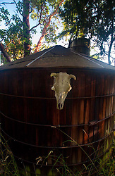 Water Tank at Horton's Hook, Shaw Island, Washington, US