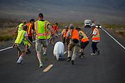 De Tetiva 2 wordt gevangen bij de finish. de zesde racedag. In Battle Mountain (Nevada) wordt ieder jaar de World Human Powered Speed Challenge gehouden. Tijdens deze wedstrijd wordt geprobeerd zo hard mogelijk te fietsen op pure menskracht. Ze halen snelheden tot 133 km/h. De deelnemers bestaan zowel uit teams van universiteiten als uit hobbyisten. Met de gestroomlijnde fietsen willen ze laten zien wat mogelijk is met menskracht. De speciale ligfietsen kunnen gezien worden als de Formule 1 van het fietsen. De kennis die wordt opgedaan wordt ook gebruikt om duurzaam vervoer verder te ontwikkelen.<br /> <br /> The Tetiva at catch on the sixth racing day. In Battle Mountain (Nevada) each year the World Human Powered Speed Challenge is held. During this race they try to ride on pure manpower as hard as possible. Speeds up to 133 km/h are reached. The participants consist of both teams from universities and from hobbyists. With the sleek bikes they want to show what is possible with human power. The special recumbent bicycles can be seen as the Formula 1 of the bicycle. The knowledge gained is also used to develop sustainable transport.