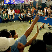 CHIANG MAI, THAILAND -MARCH 5 2006: The crowd surges with bets and odds as the clock counts down, with gamblers trying to make the most of each round. Although gambling is technically illegal, betting on cock matches is a longtime tradition and authorities nearly always ignore it. Fear of Bird Flu caused officals to ban Thai cock fights in 2005, but a persistent movement of Thai's claiming the social significance of the sport and a reduction in Bird Flu cases has allowed the fights to resume. (Photo by Logan Mock-Bunting)