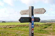 Direction arrow signs on the prehistoric Ridgeway long distance route way, near Overton Hill, Marlborough Downs, Wiltshire, England, UK
