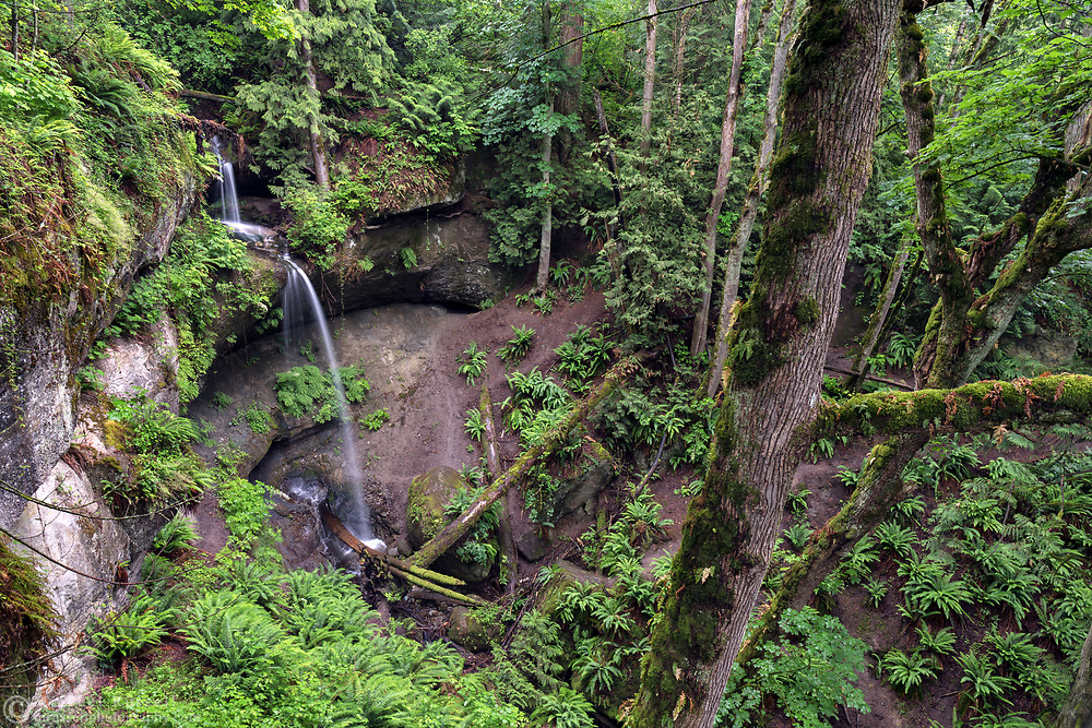 Devon Falls after a recent rain in Abbotsford, British Columbia, Canada. The rocks that make up the hills in this area of Abbotsford have a lot of Sandstone, which erodes faster than the other rock in the area - and creates the interesting shapes at this location.  Devon Falls was one of the favourite places of Devon Clifford, a local musician who died at the age of 30, and after whom the falls are named.