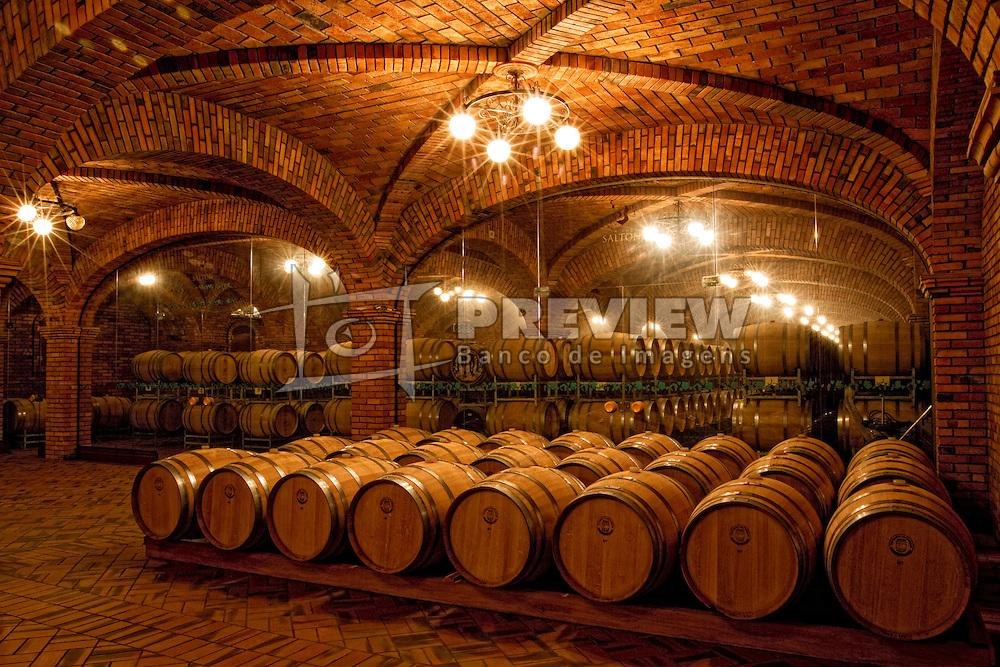 Em meio a um cenário singular, na Serra Gaúcha, a Vinícola Salton mantém uma missão que teve início no século passado: elaborar vinhos, espumantes e sucos saudáveis e de alta qualidade, promovendo a máxima satisfação dos consumidores. FOTO: Marcos Nagelstein/Preview.com
