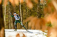 FRANCONIA, NH - MARCH 13: Tobias Moosmann of the Northern Michigan Wildcats during the Men's Freestyle Nordic race at the Division I Men's and Women's Skiing Championships held at the Jackson Ski Touring Center on March 13, 2021 in Franconia, New Hampshire. (Photo by Brett Wilhelm/NCAA Photos via Getty Images)