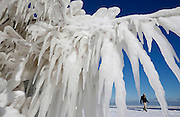 A man walks past an ice-covered tree along Lake Michigan in Chicago, Illinois, February 2, 2015. The area was hit with blizzard conditions yesterday and was followed by a huge temperature drop to well below freezing.  REUTERS/Jim Young