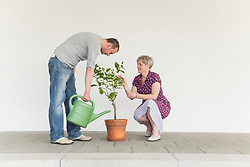 Mature couple caring for little tree
