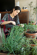 Sao Paulo_SP, Brasil...Na foto uma personal chef (vai na casa das pessoas ensinar a comer bem em casa) e mantem uma horta dentro de casa em Sao Paulo...In this photo a personal chef (She goes to people homes and teaches how to eat well at home) and she has some plants in the house in Sao Paulo...Foto: SERGIO ZACCHI / NITRO