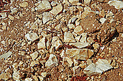 Chablis: This is the limestone soil in Les Clos grand cru vineyard, Bourgogne