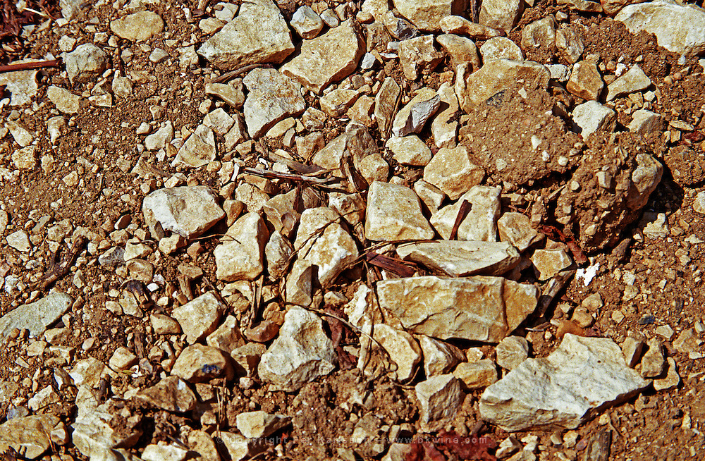 Chablis: This is the limestone soil in Les Clos grand cru vineyard, Bourgogne