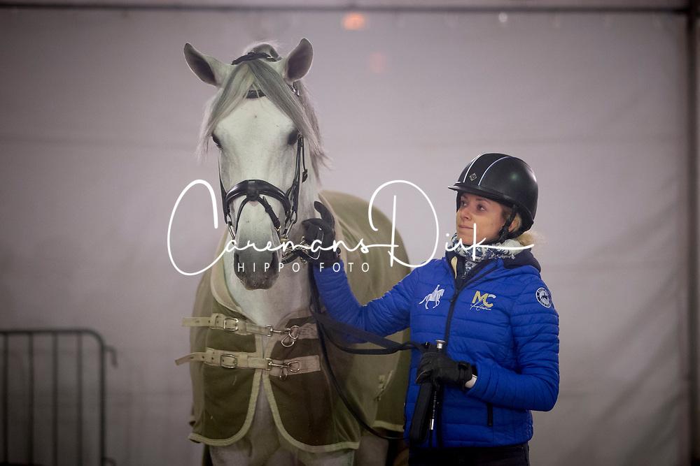 Caetano Maria, POR, Coroado<br /> Jumping Mechelen 2018<br /> © Hippo Foto - Sharon Vandeput<br /> 27/12/18