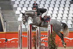 Kenis Pieter, BEL, Petit Cornet v/d Rostal<br /> Pavo Hengsten competitie - Oudsbergen 2021<br /> © Hippo Foto - Dirk Caremans<br />  22/02/2021