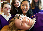 12/11/2018 Repro free: Galway Science and Technology Festival, the largest science event in Ireland, runs from 11-25 November featuring exciting talks, workshops and special events. Full programme at GalwayScience.ie. Braving a tarantula Wiktoria Szejna from Our  Lady's College Galway with Caitlin Sills , Martyna Laskiewicz, Amoy Meng  ooking on at the Science and Technology Festival. . Photo:Andrew Downes, Xposure.