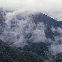 Fog drifts over upper Amazon cloud forests in Cordillera Central.